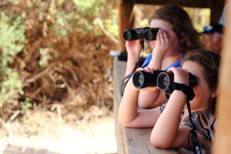 מנסים למצוא את הציפורים הנודדות דרך משקפות.  (צילום: יואב בלבן)