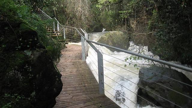 השביל התלוי (צילום: רשות הטבע והגנים) (צילום: רשות הטבע והגנים)