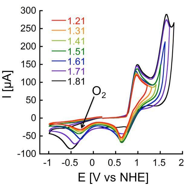 מדגים את ביצועי הזרז החדש במונחים של ייצור חמצן. החץ השחור מצביע על המתח המינימלי הדרוש לתהליך - מתח נמוך ב-50% בממוצע מהמתח הנדרש בהתקנים קיימים לפירוק מים (צילום: דוברות הטכניון)
