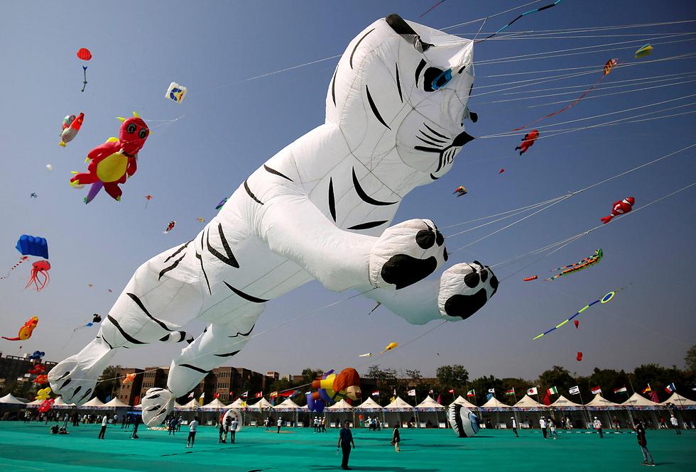 פסטיבל עפיפונים בינלאומי בעיר אחמדאבאד, הודו (צילום: רויטרס)