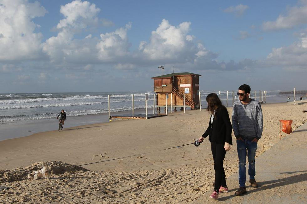 טיול בחוף ראשון לציון (צילום: אבי מועלם) (צילום: אבי מועלם)
