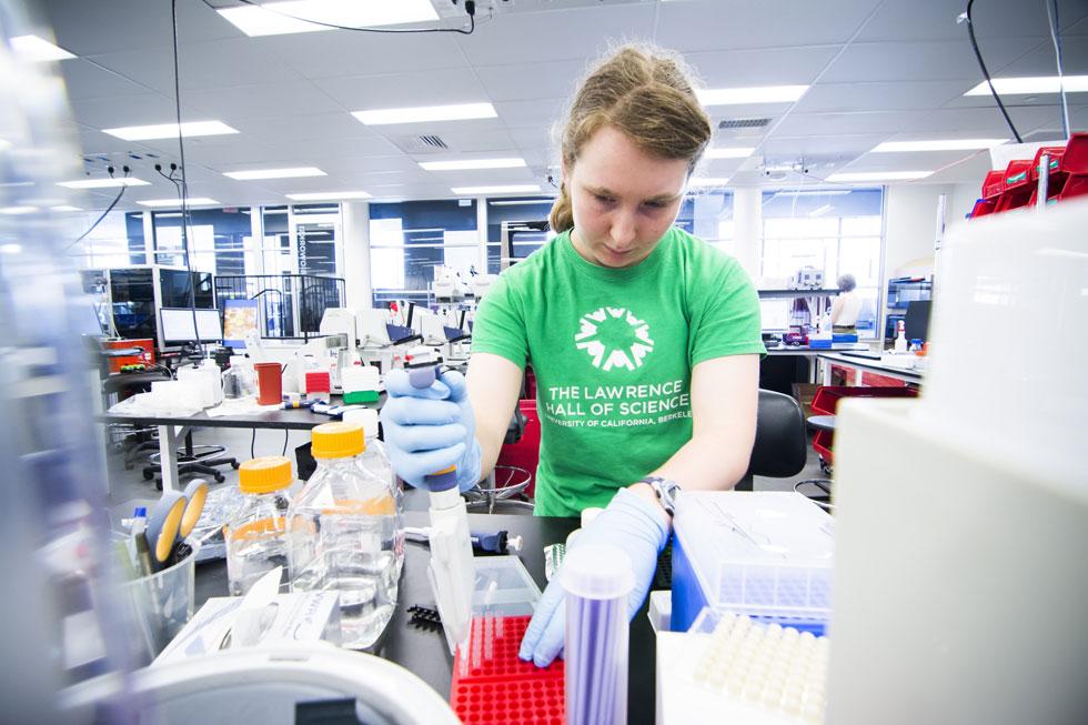 מייצרת פיגמנטים באמצעות  חיידקים.  Ginkgo Bioworks (צילום: Ginkgo Bioworks)