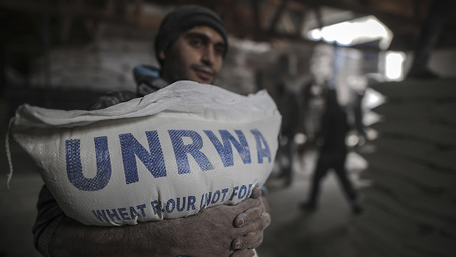 UNRWA provides flour to Gaza residents (Photo: MCT)