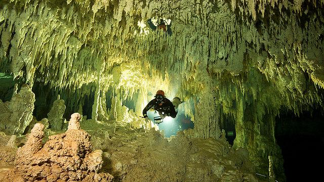 המערה היפהפייה במקסיקו (צילום: רויטרס) (צילום: רויטרס)