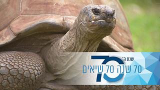 החיות הזקנות ביותר בישראל