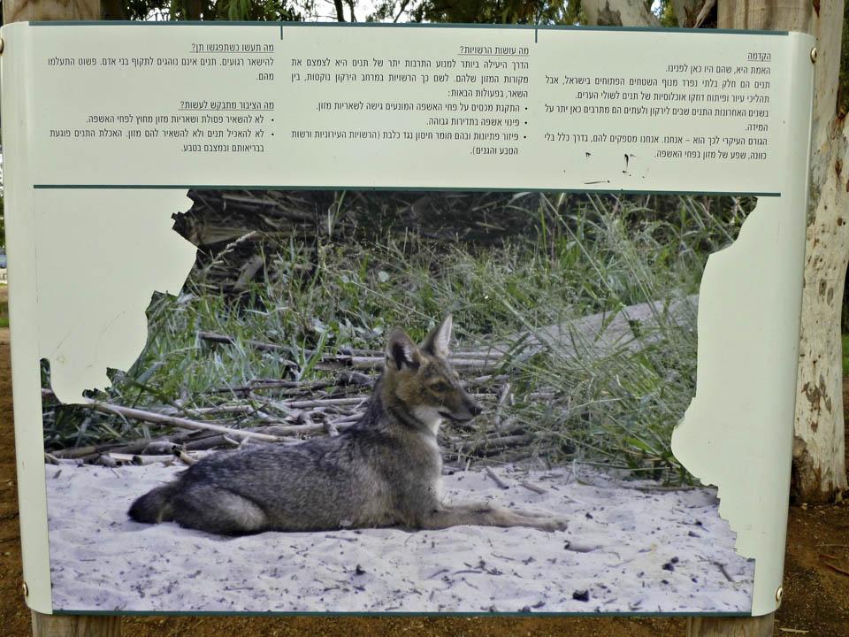 Щит при входе в парк Ха-Яркон. Фото: Леон Левитас