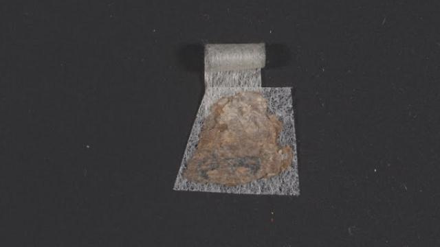 """(צילום: שי הלוי - רשות העתיקות, הספרייה המקוונת של מגילות מדבר יהודה ע""""ש ליאון לוי)"""