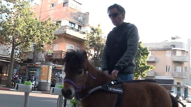 חיים ארוכים יותר ויציבות גדולה יותר - היתרונות שבסוס נחייה (צילום: ירון שרון)
