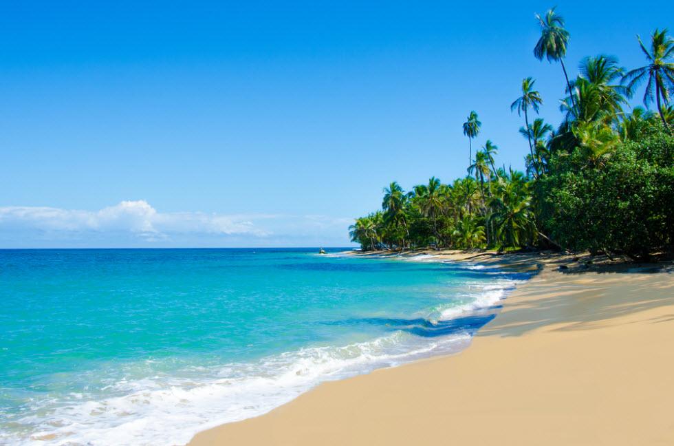 לא סתם קוראים לה גן עדן. חוף טיפוסי בקוסטה ריקה  (צילום: shutterstock) (צילום: shutterstock)