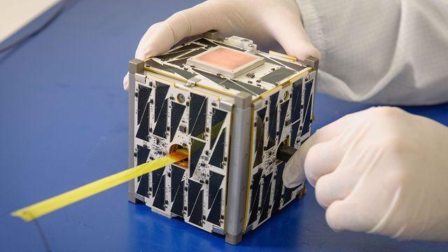 """לוויין זעיר (צילום: נאס""""א) (צילום: נאס"""