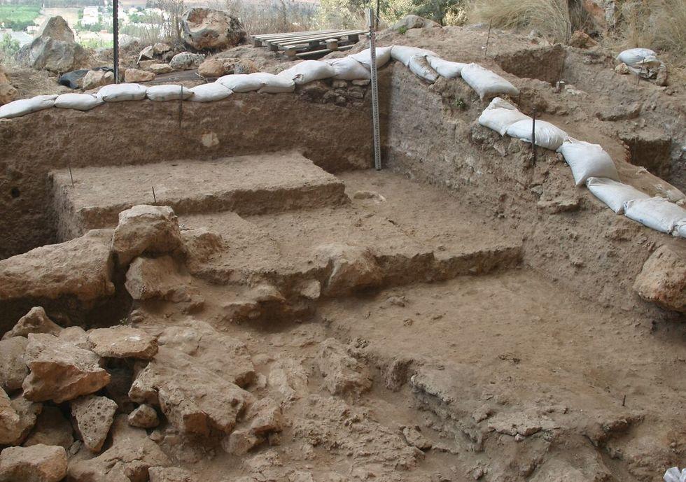 שטח החפירה שבו התגלתה הלסת  (צילום: פרופ' מינה וינשטיין-עברון, אוניברסיטת חיפה) (צילום: פרופ' מינה וינשטיין-עברון, אוניברסיטת חיפה)