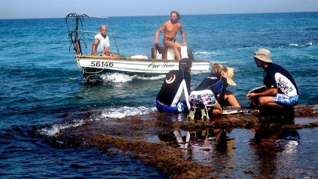 """סירת דייגים חולפת על פני צוות המחקר בשמורת דור-הבונים. מיני דגים מסחריים מהווים היום אחוז מאוד קטן מכלל הדגים (צילום: ד""""ר גיל רילוב) (צילום: ד"""