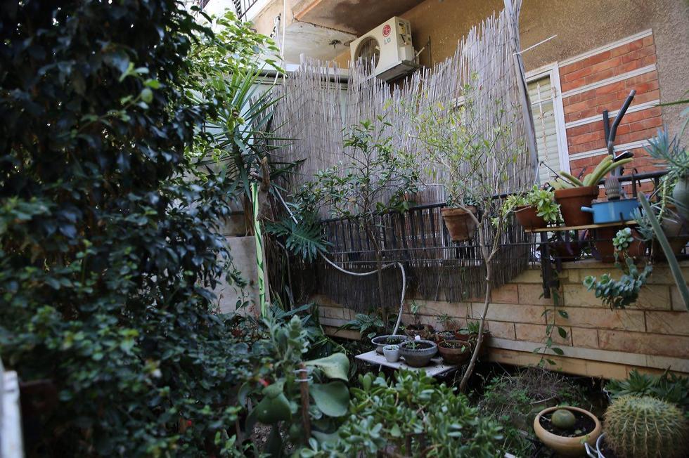 ביתו של בועז ארד בתל אביב, שבו שם קץ לחייו (צילום: מוטי קמחי) (צילום: מוטי קמחי)