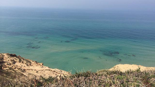 חוף בנתניה (צילום: דור אדוט) (צילום: דור אדוט)