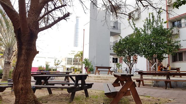 בית הספר תלמה ילין בגבעתיים (צילום: עמית הובר) (צילום: עמית הובר)
