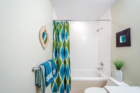 וילון האמבטיה עלול להכיל אורגניזמים מחוללי מחלות (צילום: Shutterstock)