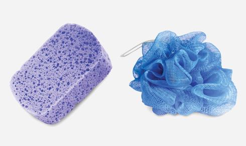ליפה לניקוי הגוף משמשת מצע לאחסון והעברת חיידקים נושאי מחלות לעור האדם (צילום: Shutterstock)