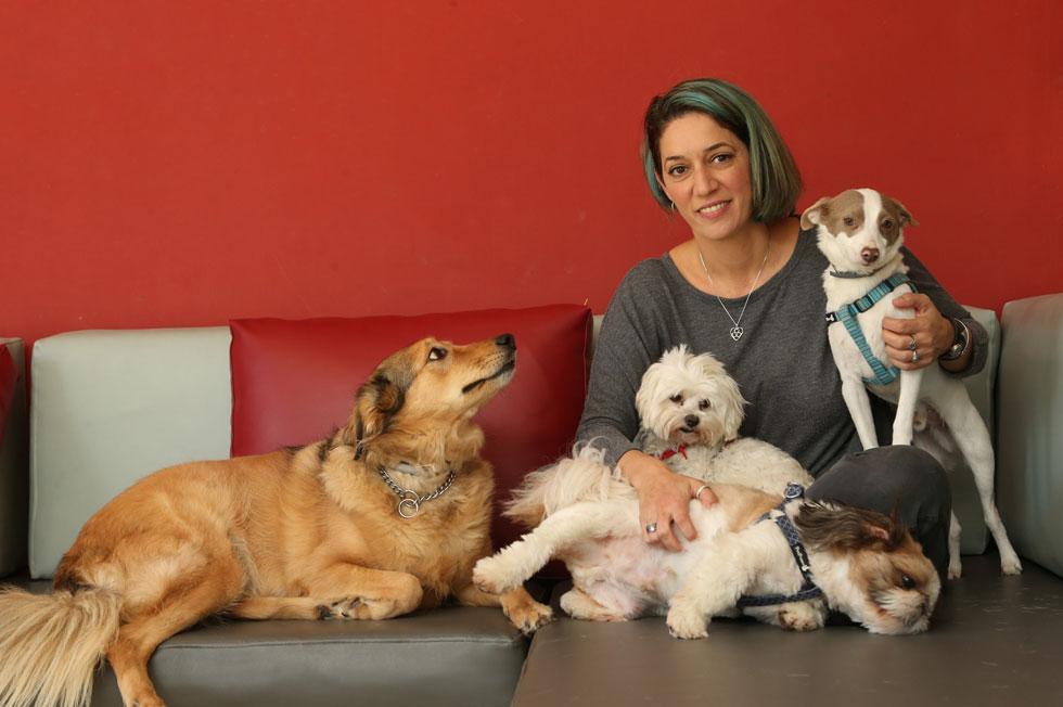 """ג'ני שחר (42), בעלת פנסיון לכלבים, נשואה פלוס שתיים, גרה בנתניה. """"הכלבים הולכים אחריי לכל מקום, אני כמו החלילן מהמלין"""" (צילום: צביקה טישלר)"""