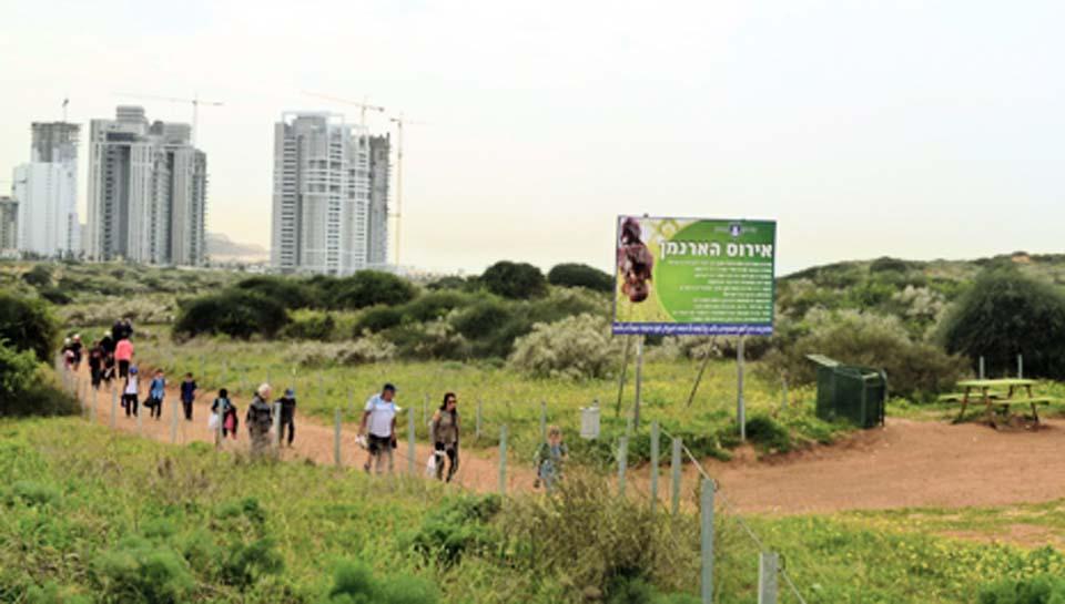 Картинки по запросу nature reserve