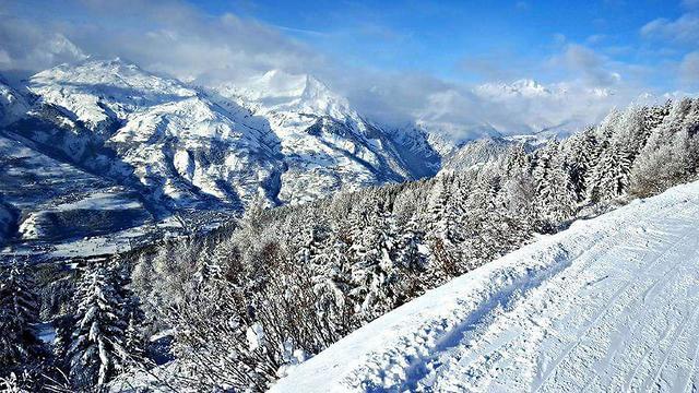 ואז באה הסופה. שלג בלז ארק (צילום: מאי וולף)