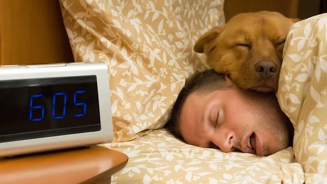 ככה אנחנו מעבירים כשליש מחיינו. שינה (צילום: shutterstock) (צילום: shutterstock)