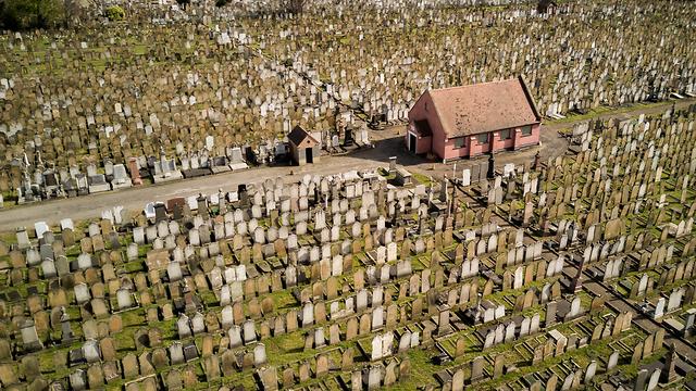 בית קברות יהודי בלונדון (אילוסטרציה) (צילום: shutterstock) (צילום: shutterstock)