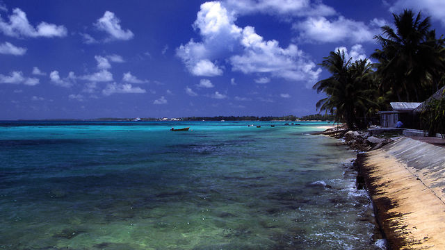 פונפוטי, אחד מאיי טובאלו ()