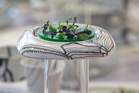יצר גן משלו בתוך הגן על השולחן (צילום: צור קוצר)