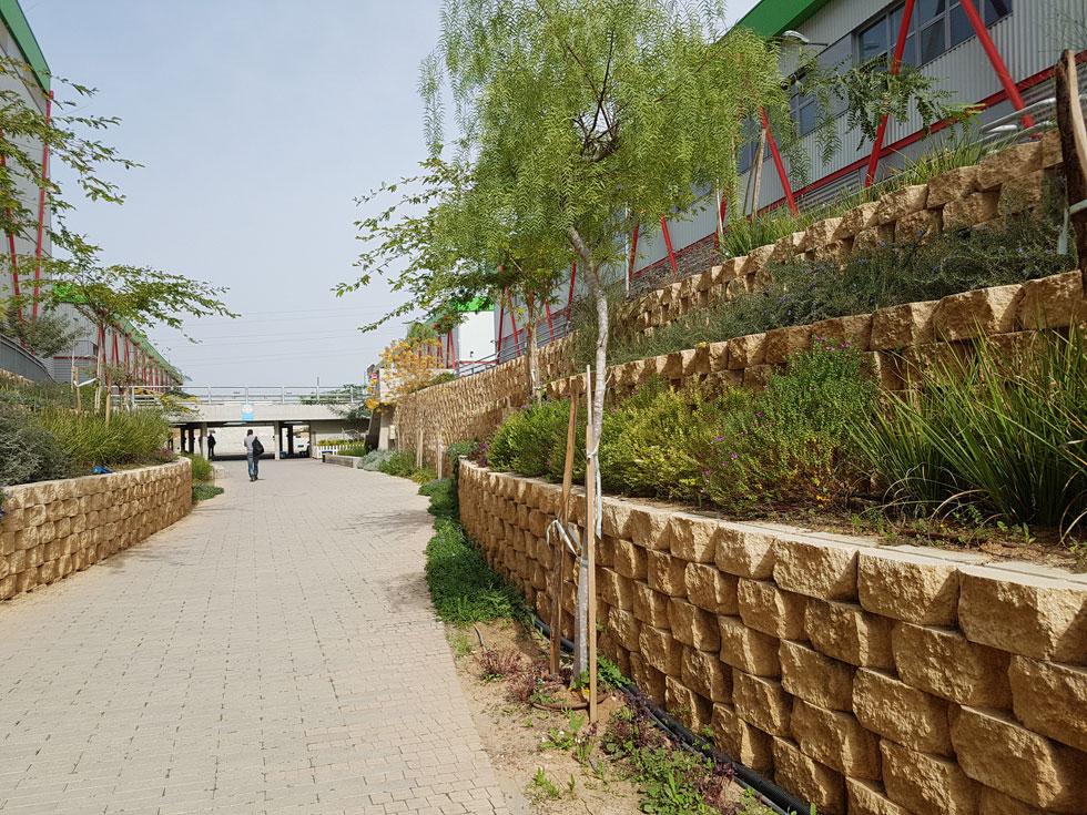 הוואדי החפור, שמקשר בין ארבעת המבנים, ''הוא הפוך מאולמות המפעל שיש בהם המון משמעת. בוואדי יש טבע, אור, צל, דברים שמשתנים כל היום'' (צילום: אורן אלדר)