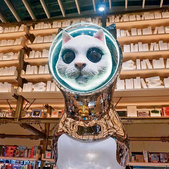 מיצג אומנותי בחנות ספרים בקניון Ginza Six