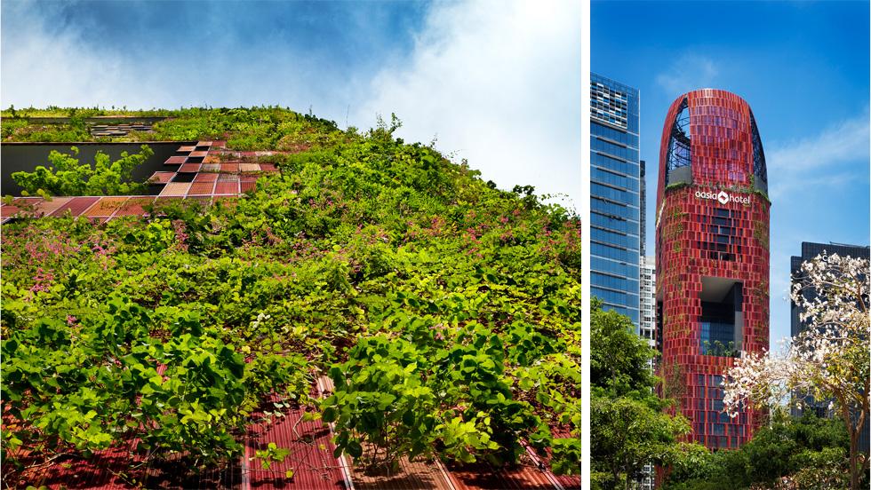 מלון Oasia בסינגפור, של אותו משרד אדריכלים, מציע בחזיתו תשתית-ענק לצמחים מטפסים, ובפנים יש פטיואים פנימיים בגובה כמה קומות (צילום: Patrick Bingham-Hall)
