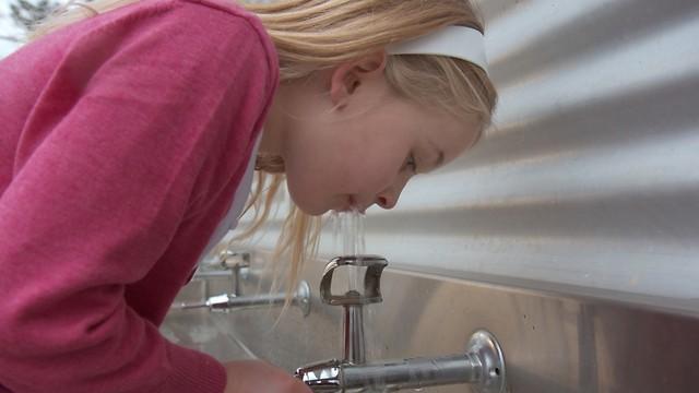 פגעו ביכולות השכליות של הילדים. מים מזוהמים בעופרת (צילום: shutterstock) (צילום: shutterstock)