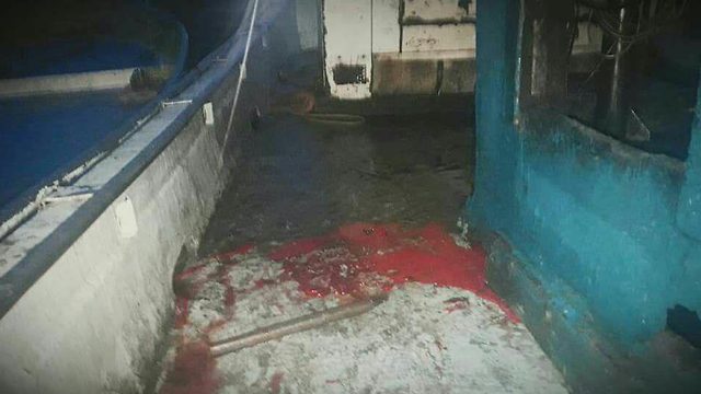 Blood on the deck of the Palestinian vessel