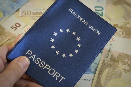 Картинки по запросу паспорт ес