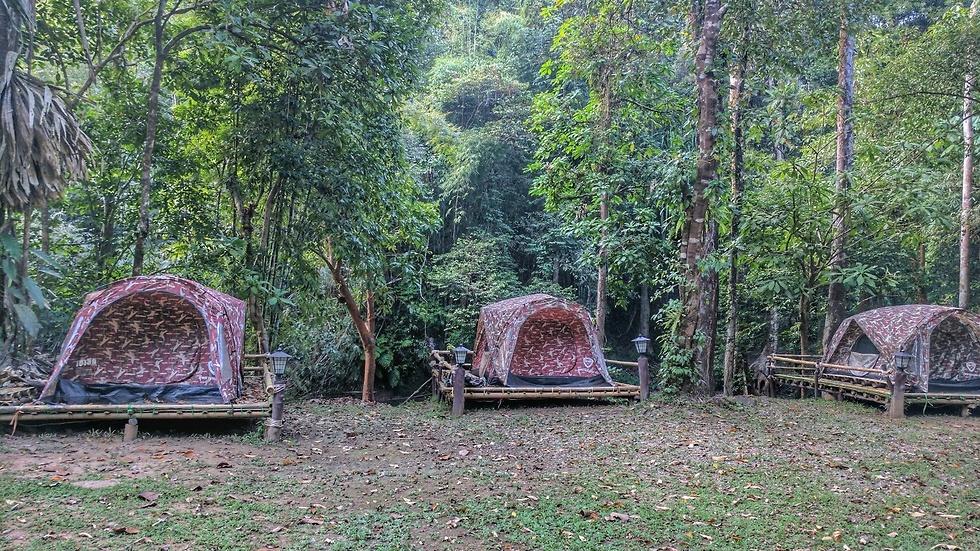 אוהלי קמפינג (צילום: נופר רונן) (צילום: נופר רונן)