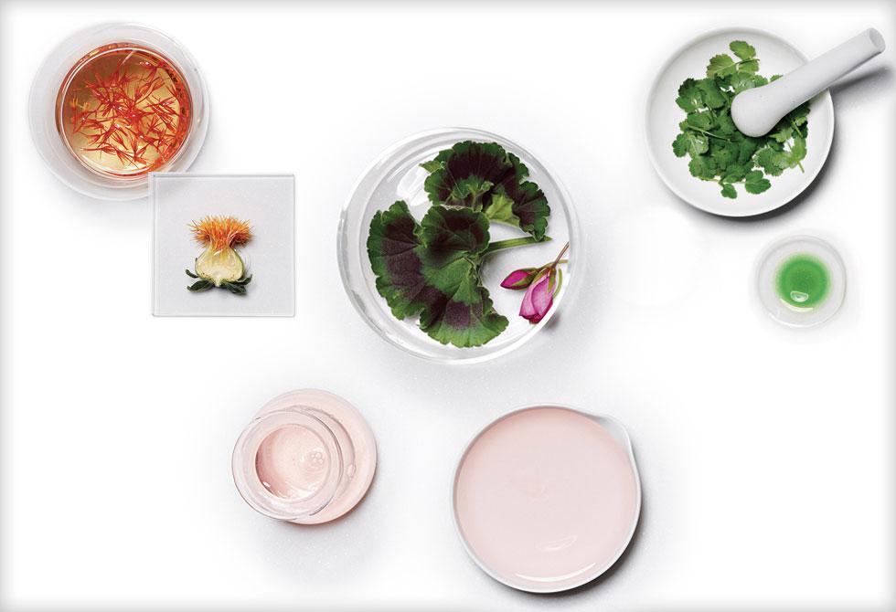 מוצרים על טהרת הרכיבים הטבעיים מזינים את הגוף ומעניקים לו ויטמינים ורכיבים חיוניים אחרים (צילום: באדיבות לוריאל)