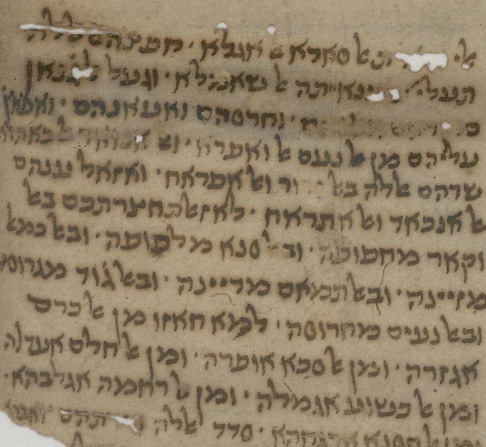 מתוך מכתב נכבדי הקראים - לרבניהם בירושלים (צילום: הספרייה הלאומית) (צילום: הספרייה הלאומית)