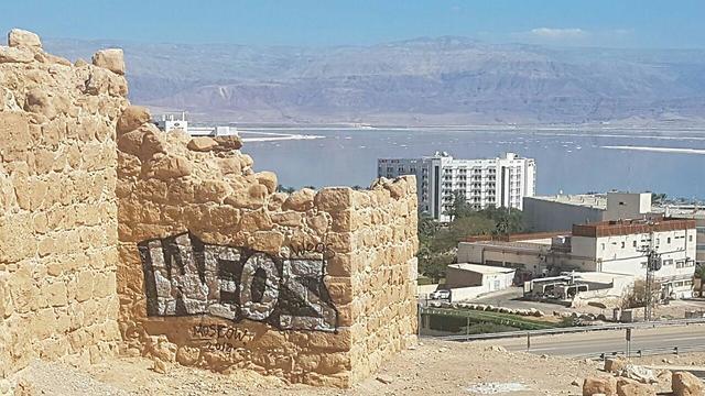 המצודה שהושחתה (צילום: הראל בן שחר, רשות הטבע והגנים) (צילום: הראל בן שחר, רשות הטבע והגנים)