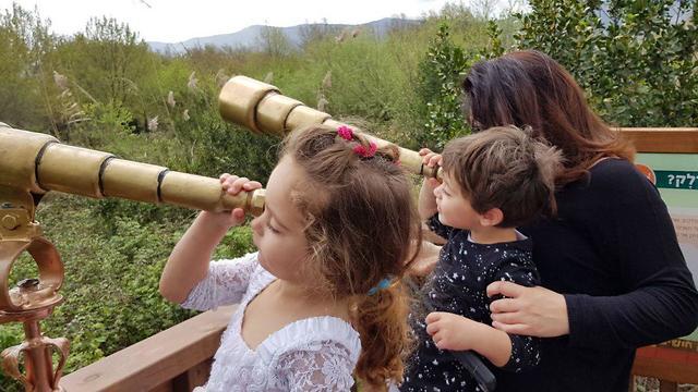 מומלץ לילדים, פארק החושים (צילום: חגי שלמה, רשות הטבע והגנים) (צילום: חגי שלמה, רשות הטבע והגנים)