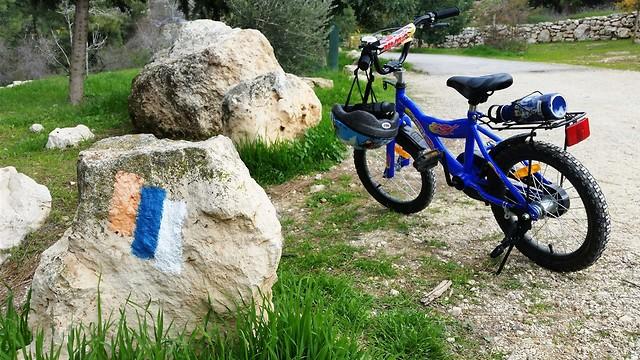 שביל ישראל בסטף (צילום: דב גרינבלט, החברה להגנת הטבע)