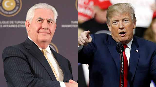 Tillerson and Trump (Photo: AP, EPA)