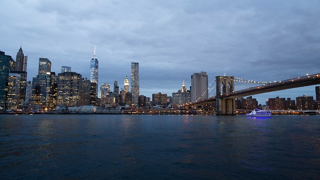 מנהטן - תערוכת ניו יורק צוברת כוח (צילום: נטלי עמרוסי) (צילום: נטלי עמרוסי)