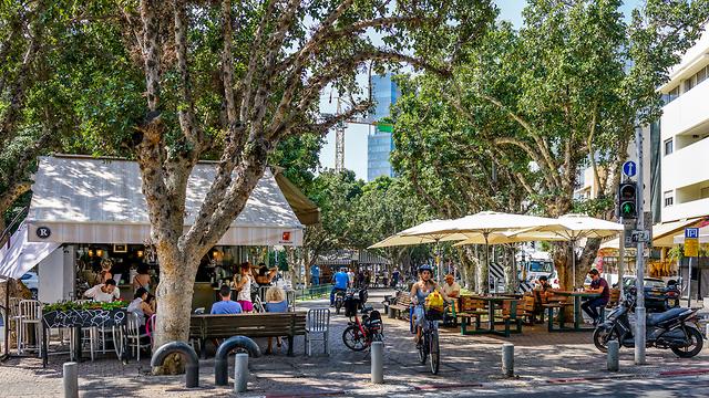 שדרות רוטשילד, תל אביב (צילום: shutterstock)