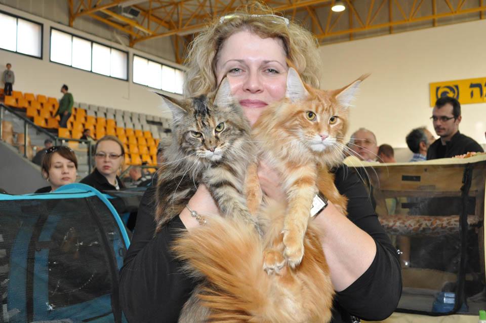 Лариса Губарева с питомцами. Фото: Александр Слободкин