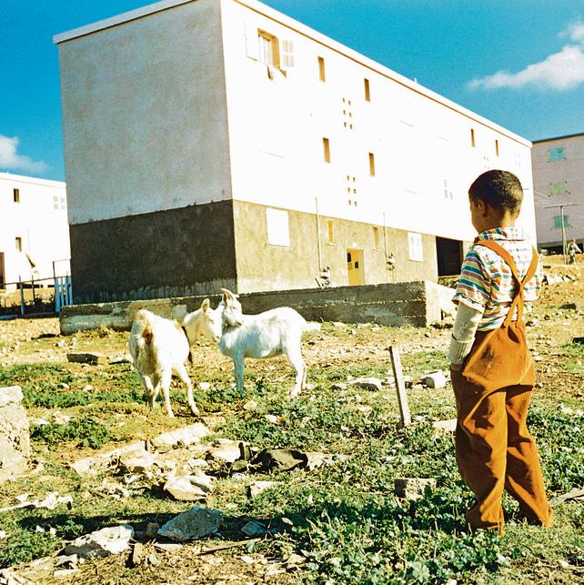 ילדים משחקים במעברת טירה ליד חיפה. בנייה פשוטה כמענה לצורכי הרגע   צילומי: דוד רובינגר
