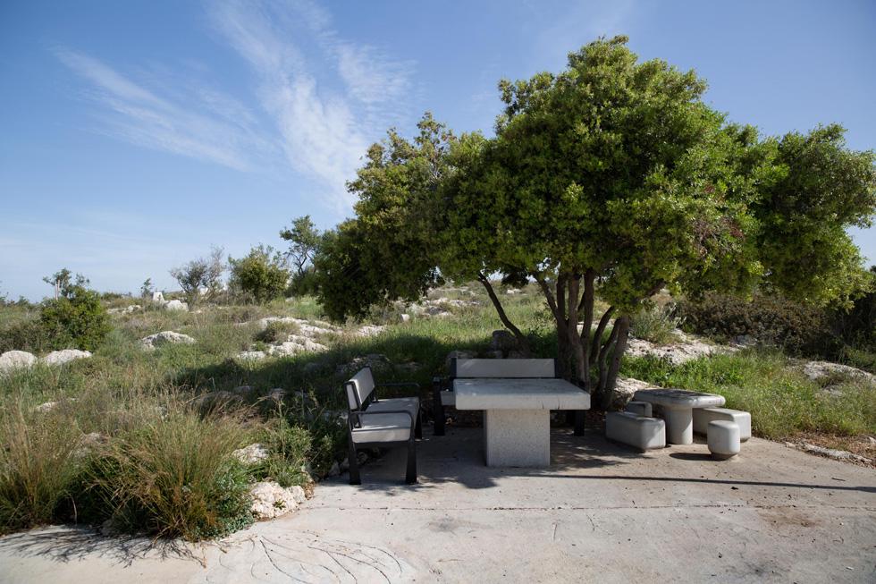 פינות ישיבה לפיקניק נבנו בצל, אך הפארק חשוף למדי, כדי למנוע חשש מייחוד (צילום: אלכס קולומויסקי)