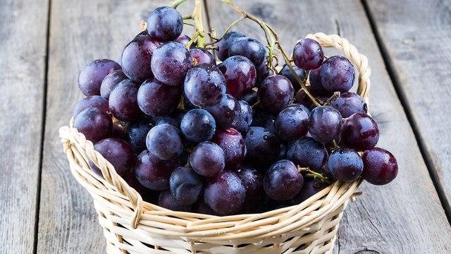 ענבים סגולים (צילום: shutterstock)