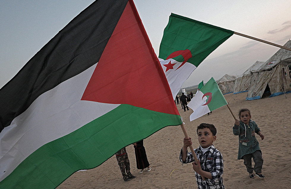 Palestinians by the border (Photo: EPA)
