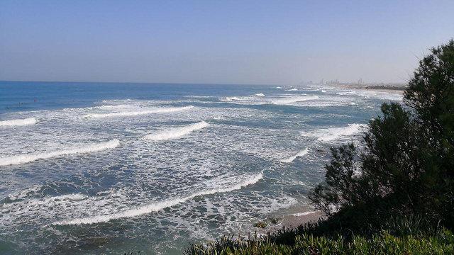 חוף פלמחים (צילום: מור לוי)