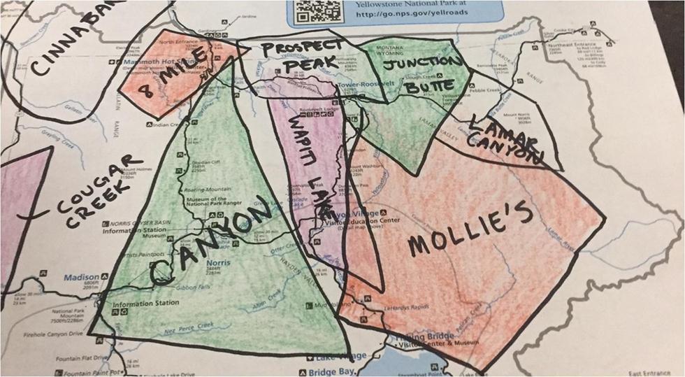 מפת להקות הזאבים ביילוסטון (צילום: מיכה אורבך)